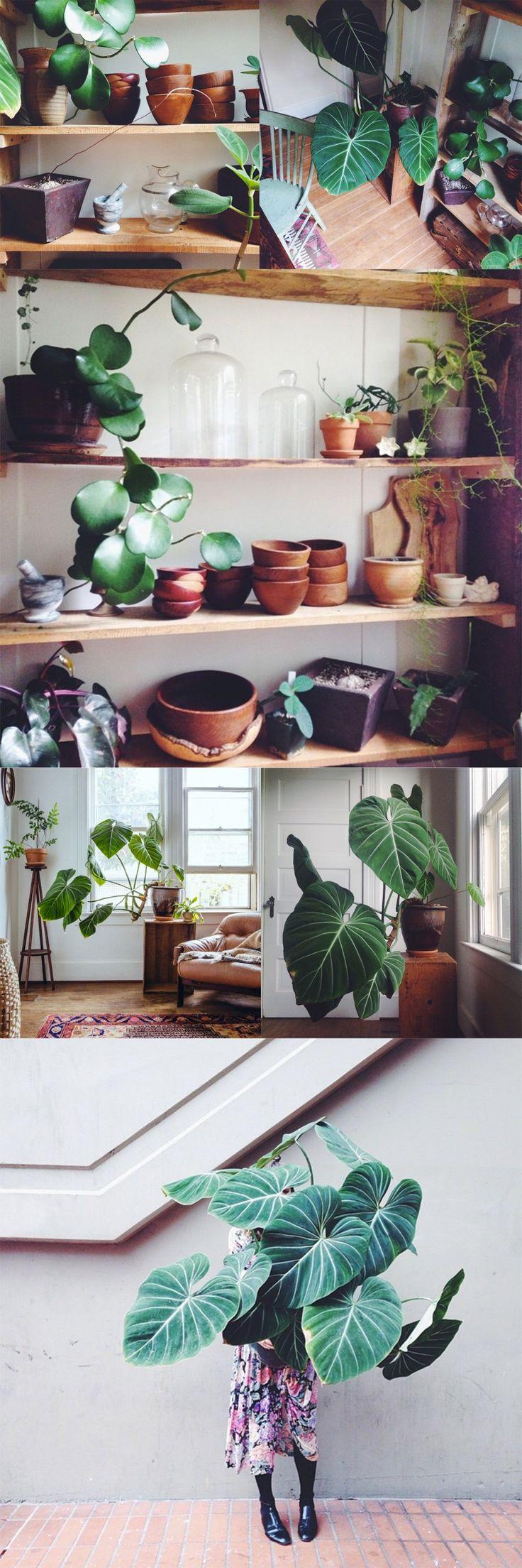 73 besten Decorating tips Bilder auf Pinterest | Hausecke ...