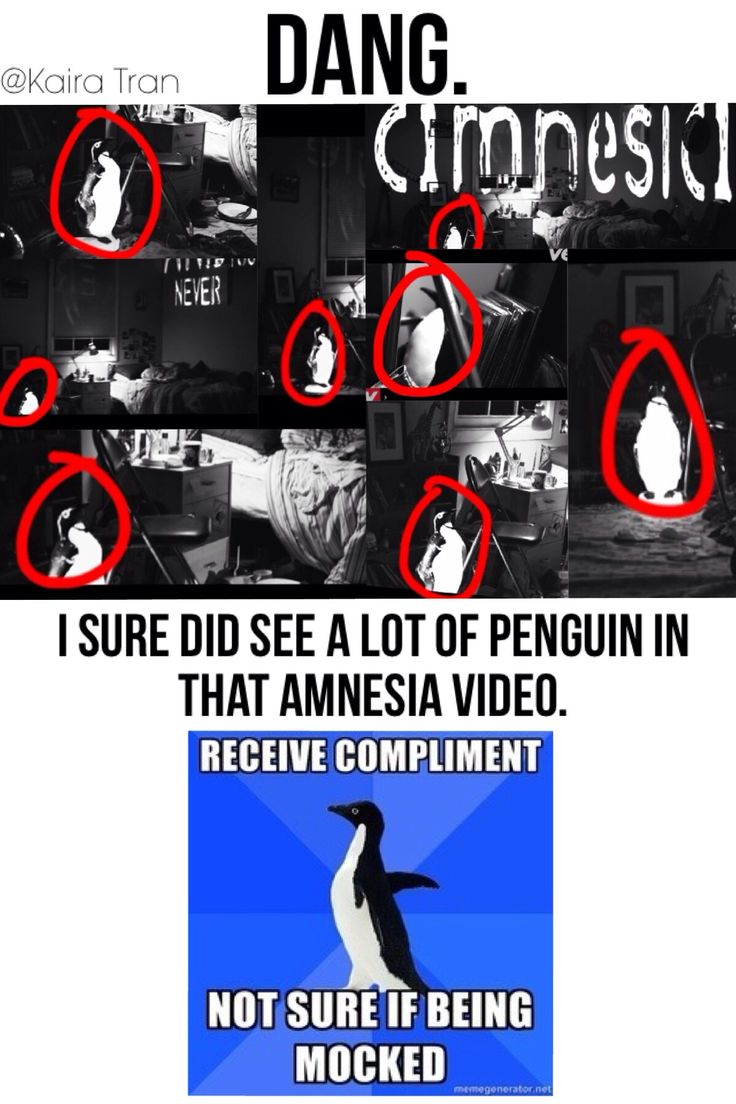 Haha. Don't get me wrong, it was a beautiful video and tears came to my eyes. But I sure did see a lot of penguin. Haha. I'll link the video down in the comments. Bravo boys! Lovely vid! Were so proud! :) #amnesia #5SecondsOfSummer #Penguins