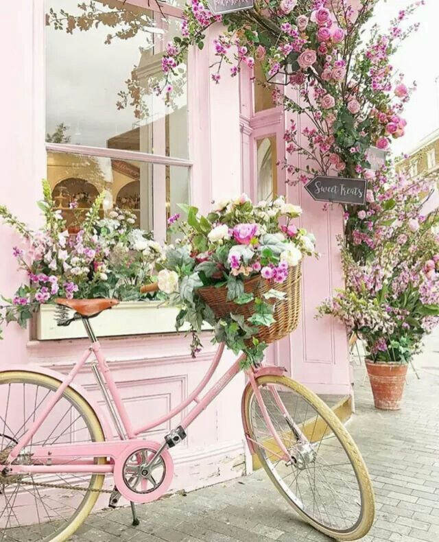 Want to do a bike like this in my landscaping