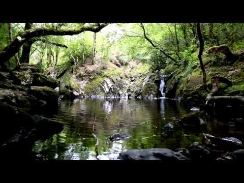 Relax - tranquil water music of nature - calming flowing dripping waterfall sounds-Meditation Peace