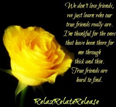 Rose True Friend Quote Via Wwwfacebookcomrelaxrelaterelease