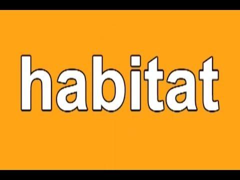 Habitats on Animal Habitats Free Printables Interactive Sites And More