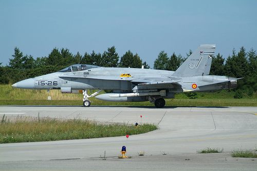 EF-18A Spanish Air Force, also a Tiger Squadron
