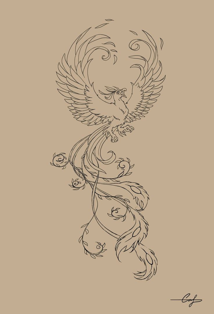 """the phoenix, actually spelled """"phenix"""" in middle english, is a greek mythological creature that represents rebirth. it is reborn from its ashes when it dies. it is a symbol adopted by early christianity (resurrection). <3"""