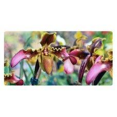 Orchidea virágos falikép