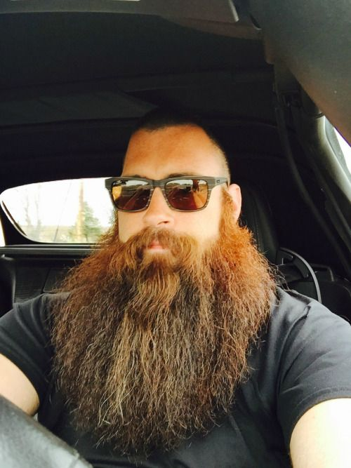 your beard my butt — bearditorium:   Snyder