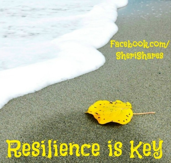 Resilience Quotes Funny: 1000+ Images About Resilience On Pinterest