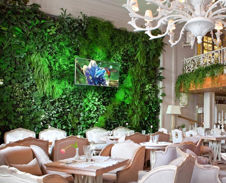 Фитостены — стены из растений, вертикальные сады | Компания Rastenia.
