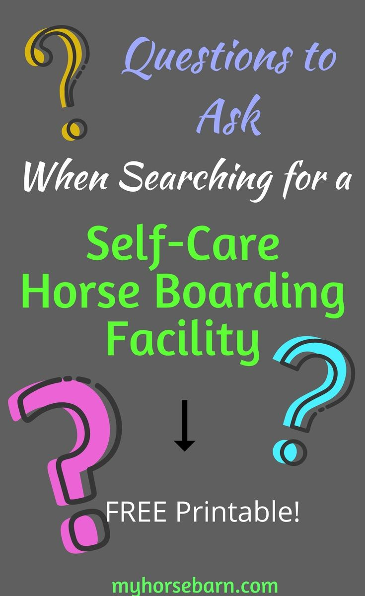 Self-Care Barn & Questions to Consider | My Horse Barn - Blog Posts