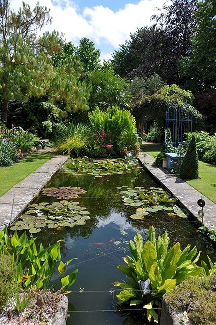 73 Pond Images Let You Dream Of A Beautiful Garden: 2007 Best Water Gardens Images On Pinterest