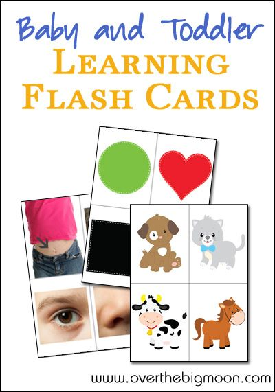 Baby and Toddler Learning Flash Cards - Body Parts, Colors/Shapes and Animal Sounds | Over the Big Moon