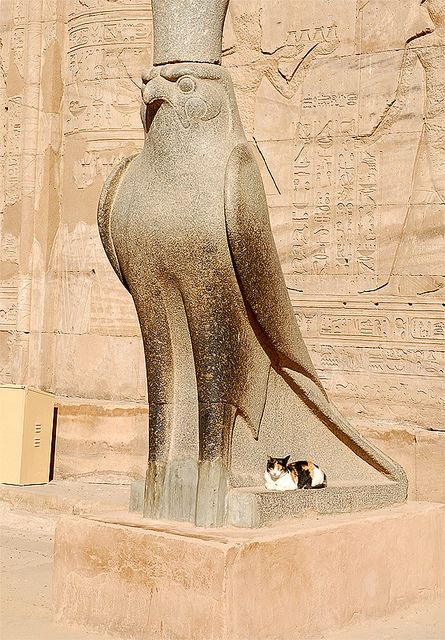 Horus statue with cat at Temple of Edfu, Egypt
