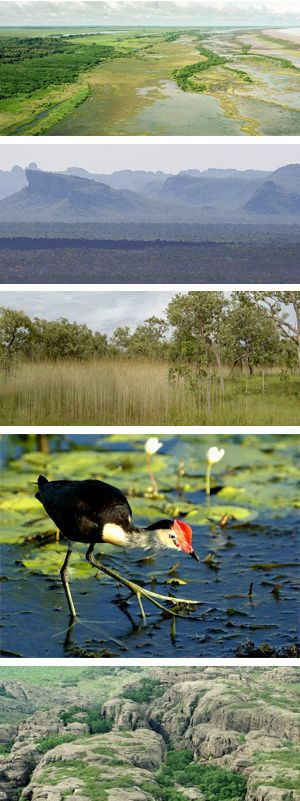 Kakadu national Park NT Australia landscapes