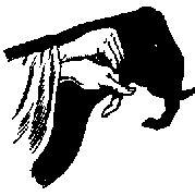 Image11.gif (1487 octets)