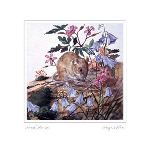 Woodmouse greetings card by Roger Lee