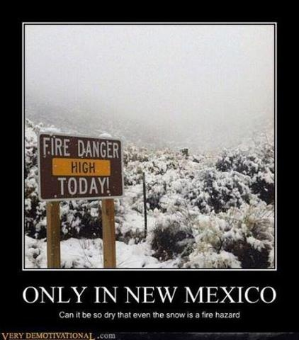 Only in New Mexico