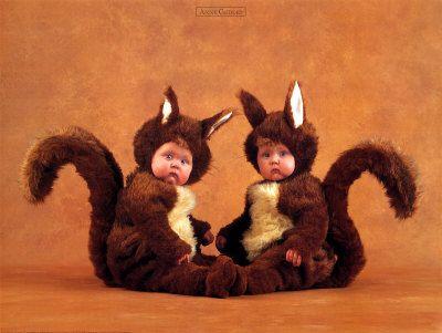 Google Image Result for http://www.kveller.com/blog/wp-content/uploads/2012/05/anne-geddes-squirrels.jpg
