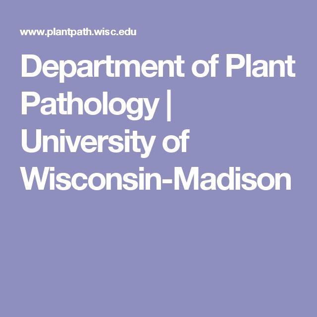 Department of Plant Pathology | University of Wisconsin-Madison