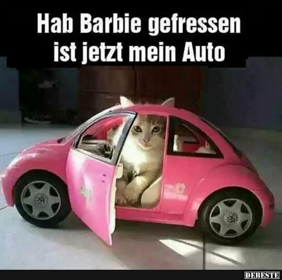 Hab Barbie gefressen ist jetzt mein Auto.. | Lustige Bilder, Sprüche, Witze, echt lustig