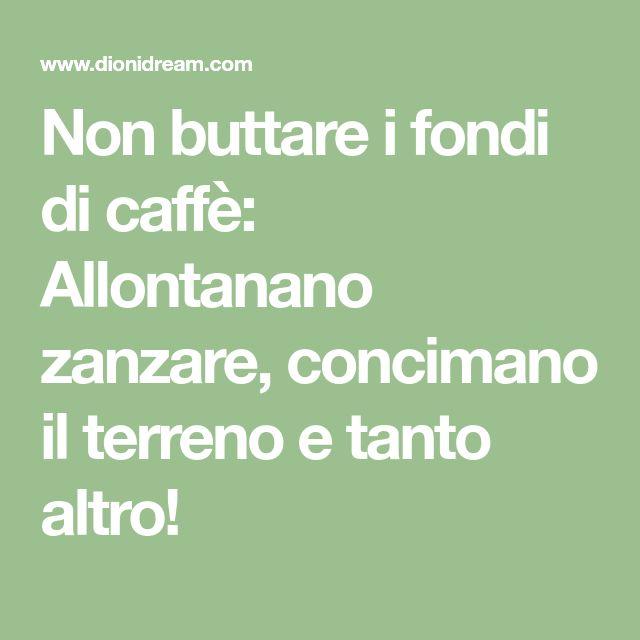 Non buttare i fondi di caffè: Allontanano zanzare, concimano il terreno e tanto altro!