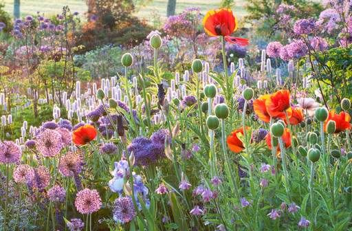 Ton ter Linden - tuinkunst