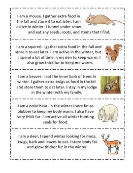43 best images about animal adaptations on Pinterest | Budget ...