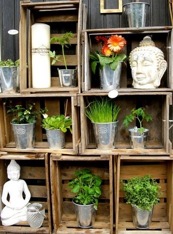 metal pots and little plants in old crates