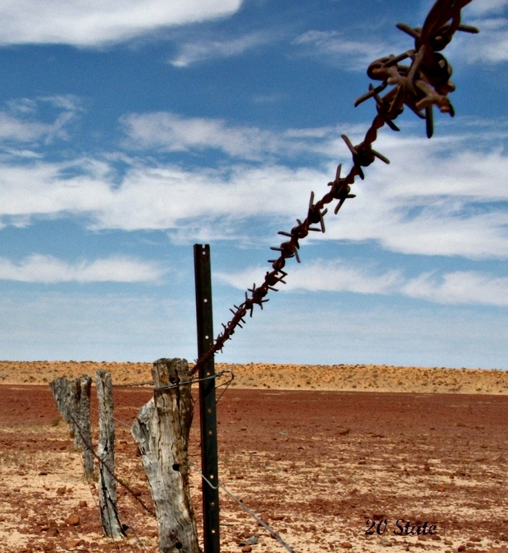 106 best Barbed Wire images on Pinterest | Res life, Barbed wire and ...