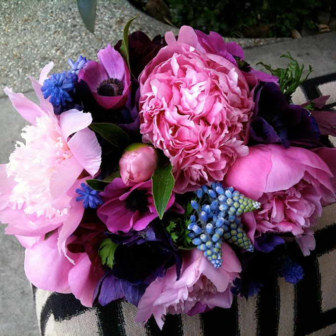 Peonies, muscari, and anemones. Photo: Holly Vesecky