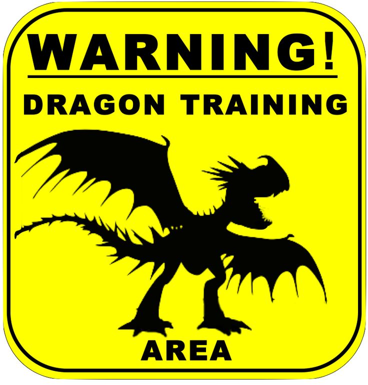 26 best How to train your dragon birthday images on Pinterest