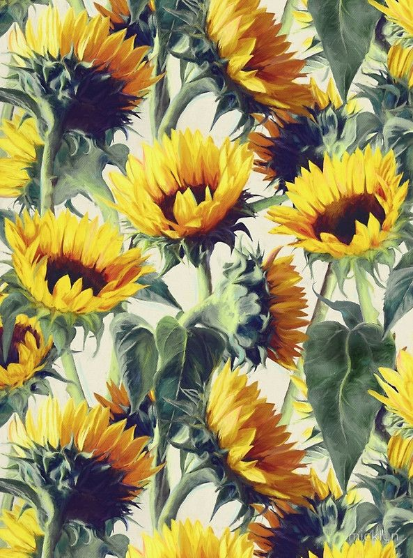 Sunflowers Forever by Micklyn Le Feuvre #sunflower #illustration #pattern #design