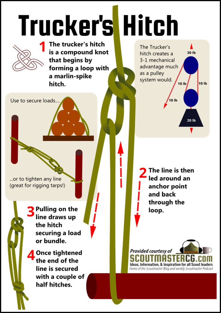 Trucker's Hitch - your brain can be the best piece of equipment in a survival kit.