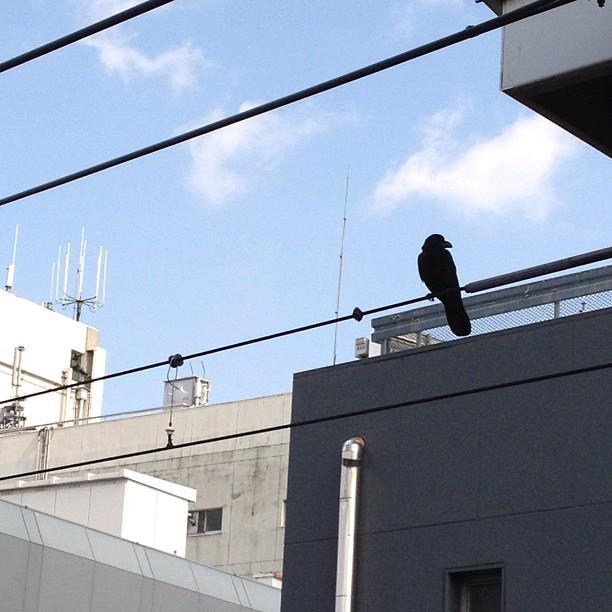 Yutenji, Meguro