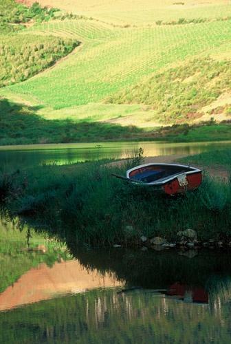 Photo Gallery - Thelema Mountain Vineyards