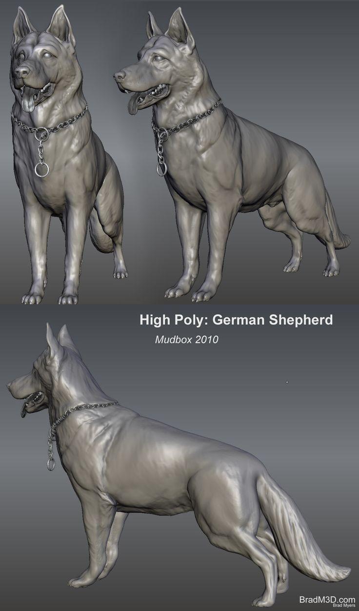 High Poly German Shepherd Mudbox sculpt #dog #cg #3d