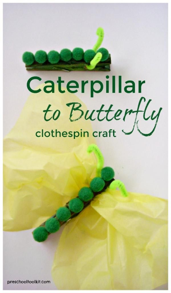 Caterpillar to butterfly craft for kids