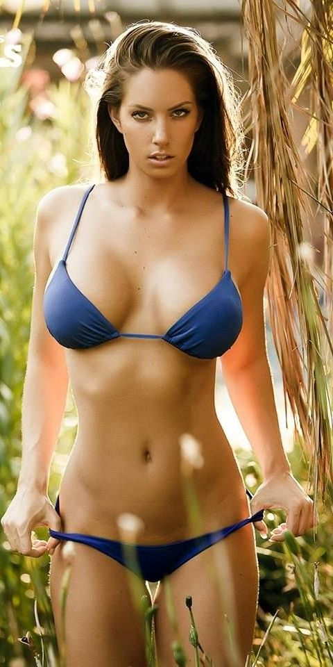 Daily Bikini Babes  Daily Bikini Babes   Pinterest -9159
