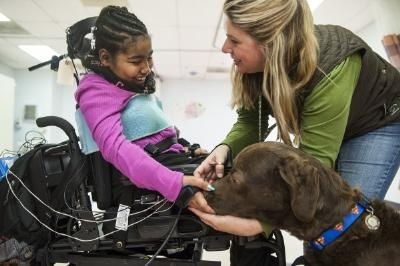 Therapy dogs help girl learn to move after spinal cord injury - Pinned by @PediaStaff – Please Visit  ht.ly/63sNt for all our pediatric therapy pins