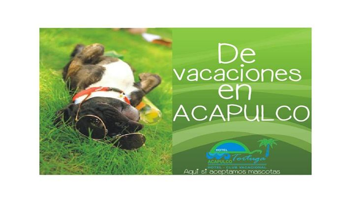 Hotel Pet Friendly Acapulco