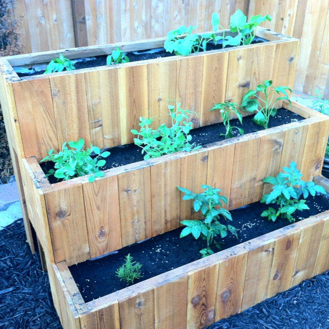 Tiered vegetable planter