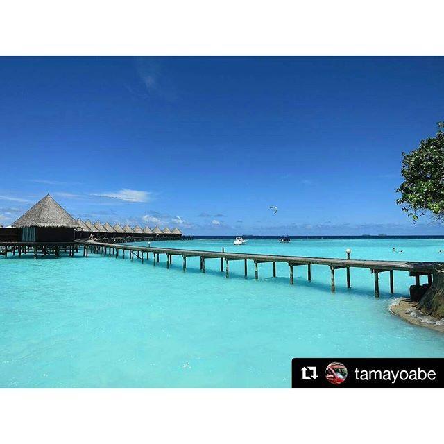 【coloursofmaldives】さんのInstagramをピンしています。 《#Repost @tamayoabe with @repostapp ・・・ モルディブ 沖でやってる水上スキー気持ちよさそう✨  Amazing color!! #maldives #bluesky #beach #emeraldsea #sunnyday #sea#indianocean #cottage #island #paradise #モルディブ#南国 #海 #青空 #晴天#水上コテージ #島 #マリンスポーツ #絶景》