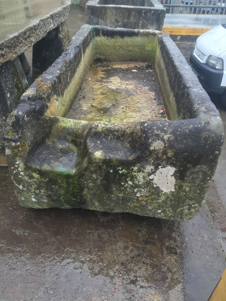#Ancient limestone trough