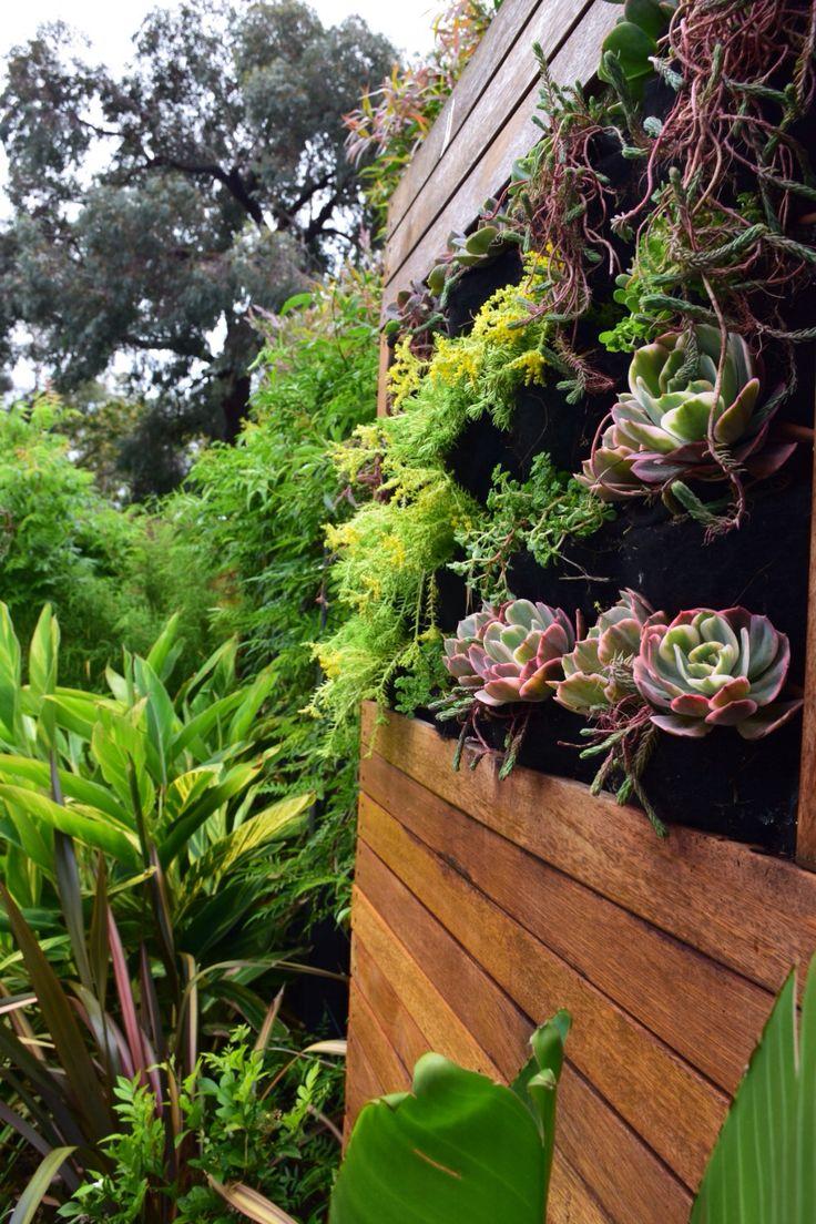 196 best Vertical Gardens images on Pinterest Vertical gardens