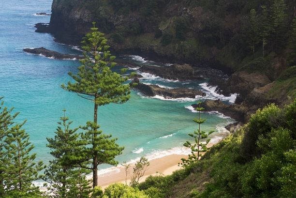 Norfolk Island National Park, Norfolk Island - If anyone here is...