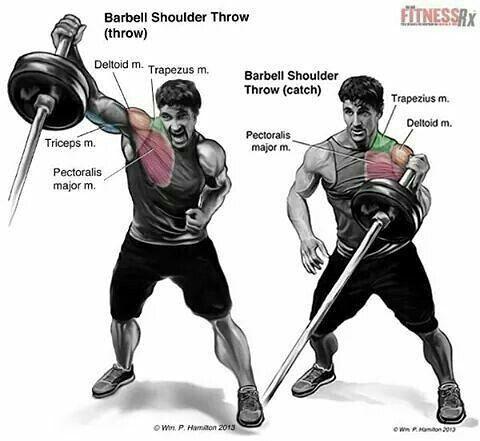 Barbel shoulder throw 💪💪💪 @ritebite_maxprotein @muscletech @bsnsupplements  #fitnessaddict #fitnesslife #fitgirl #fitnessjourney #fitnessfreak #fitfood #Fitnessmodel #fitmoms #weightlifting #boxing #boxinglife  #active #opa #flex #ripped #pump #aroundtheopa #swole #kitchener #waterloo #oldschool #bodybuilder #diet #academia #musculaçãot #deadlifts