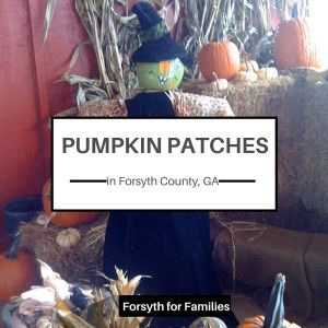 Pumpkin Patches in and around Forsyth County, GA for 2015