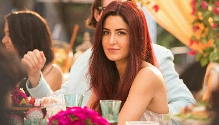 Katrina Kaif still from Fitoor movie.