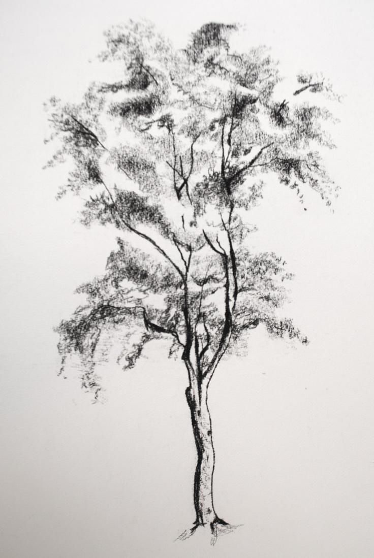 деревья рисунок графика этого прослушала полностью