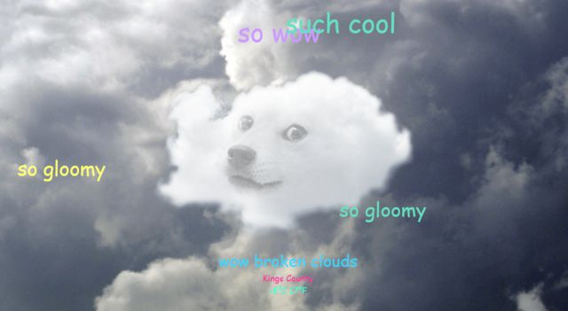 Wow, such weather: Doge Weather, A Weather Site Starring the Doge Meme