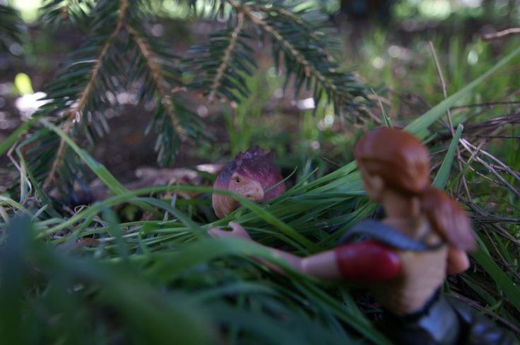 Sarah Harding déjà sur l'île, découvre un bébé stégosaure et tente de le toucher et de le prendre en photo.  Quelle merveilleuse rencontre....